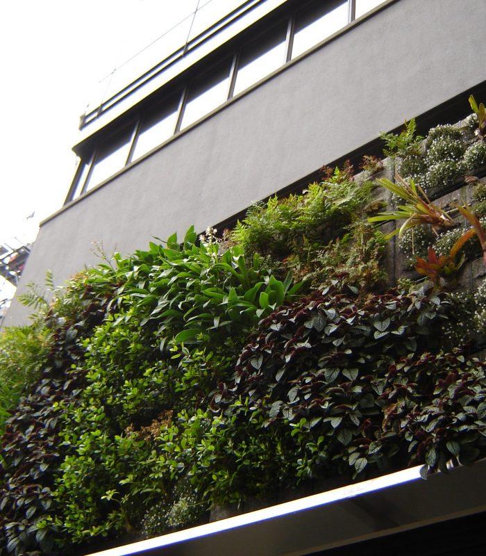 green-wall-establishment-1