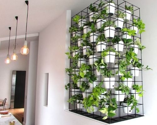 indoor-vertical-garden-500x500