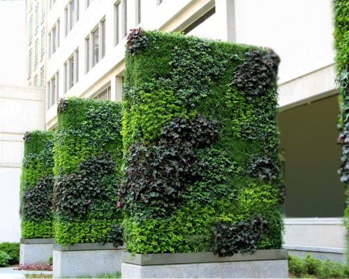Outdoor Vertical Garden Services in India
