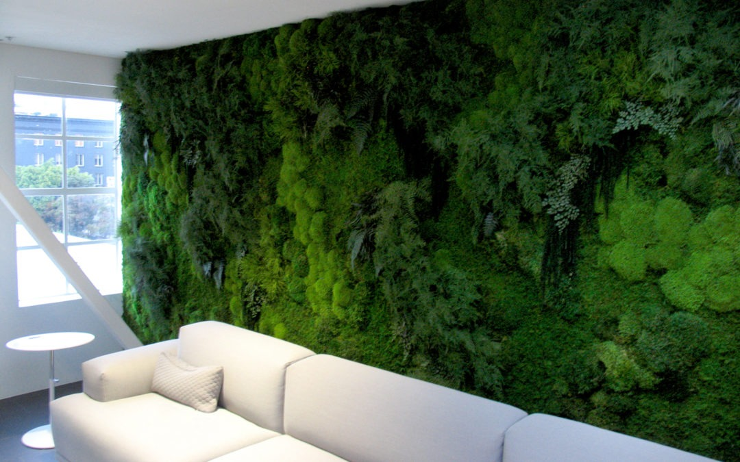 Vertical Garden Services in Gurgaon