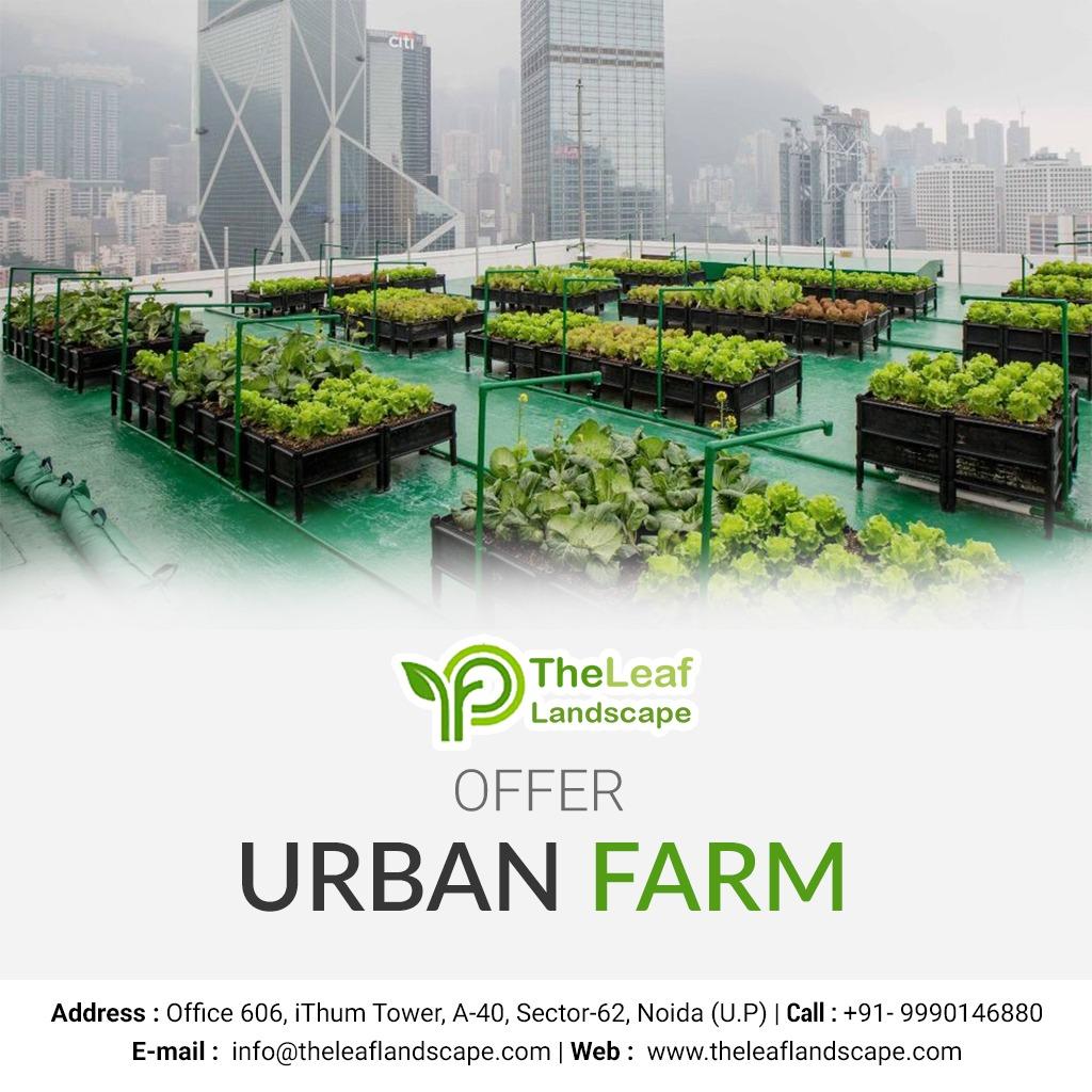 vertical garden provider