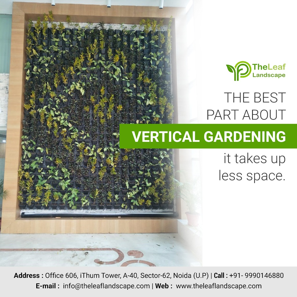 Advantage and risks of vertical gardens