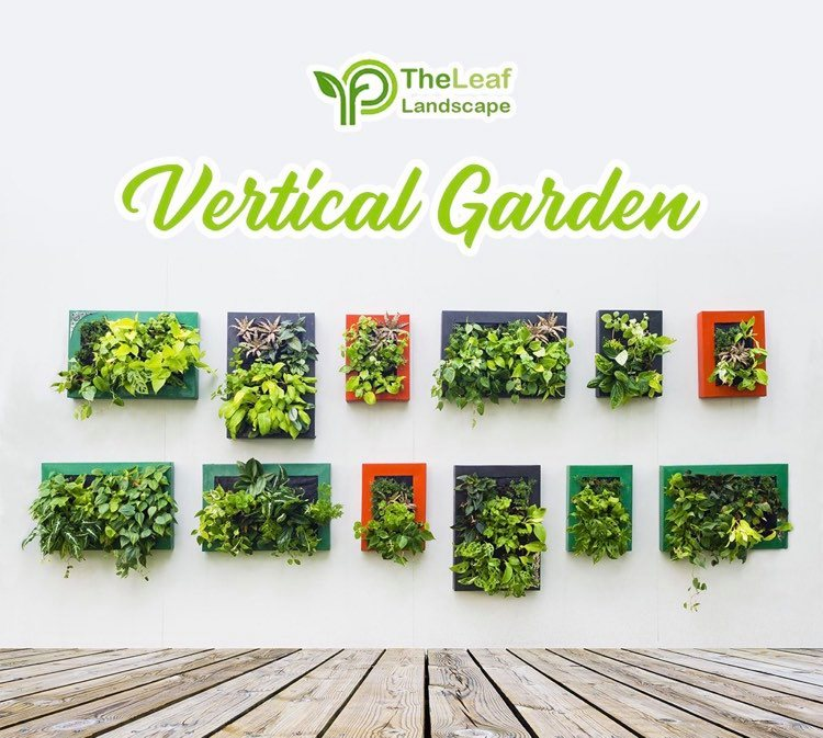 Vertical Garden at Best Price in India